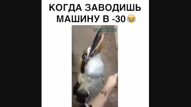 Когда заводишь машину в -30 ))