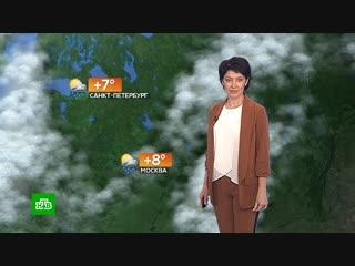 Прогноз погоды на 23 октября