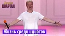 Барби и Кен Жизнь среди идиотов Вечерний Квартал 2018