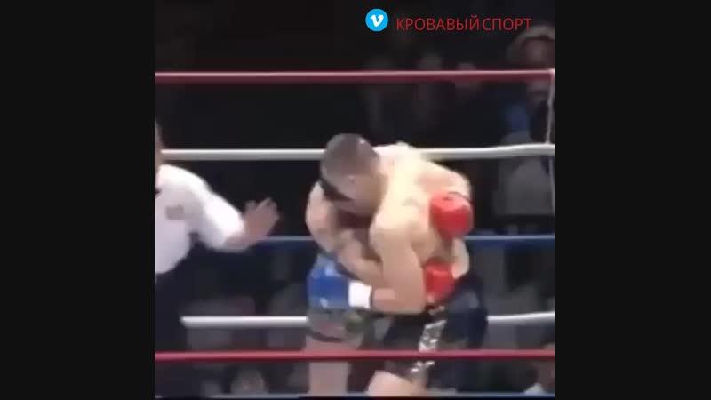 Мирко Крокоп