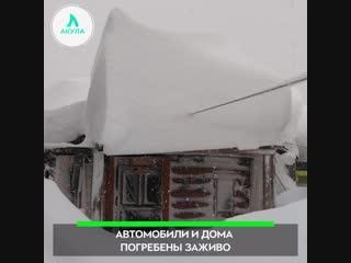 Камчатку засыпало снегом | АКУЛА