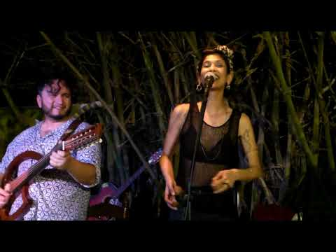 Darlini Singh Trio at Organic Vibes