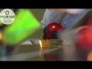 Кулинарное шоу Молекулярная кухня _ Pro100 event agency