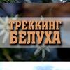 """Алтай. Треккинг к Белухе с """"ТРИКОНЯ"""" 2019"""