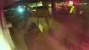 Видео нападения на инкассаторов в Одессе