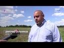 Более 120 гектаров борщевика Сосновского истребили в Одинцовском городском округе