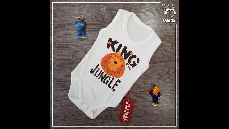 Бодик King of the Jungle