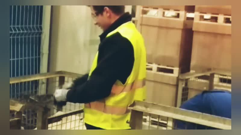 Kiedy działa huynya* работник года*