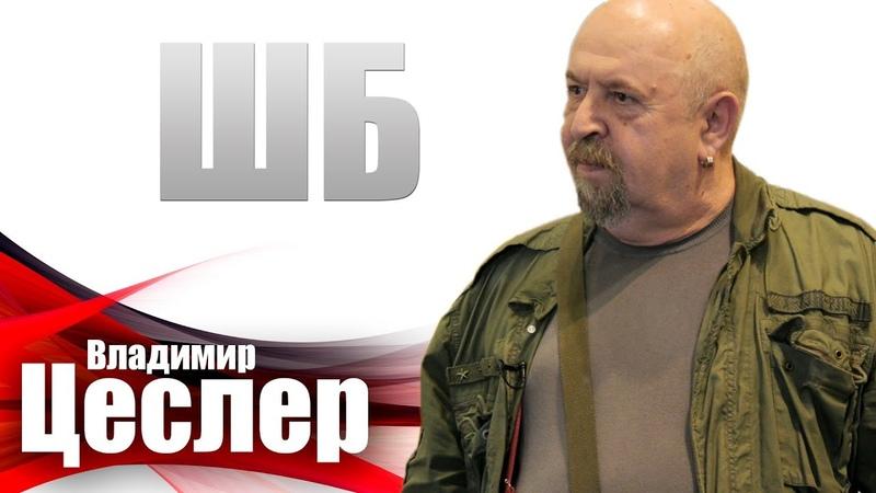 Цеслер - Макаревич, Levis и BELAVIA ШБ