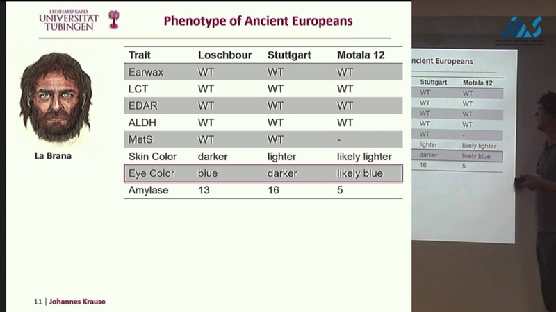 Johannes Krause Ancient human genomes suggest three ancestral populations for modern Europeans