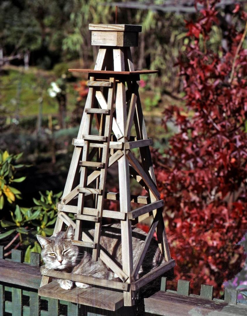 Властелин высокой башни: Самодельные игрушки матерого кота