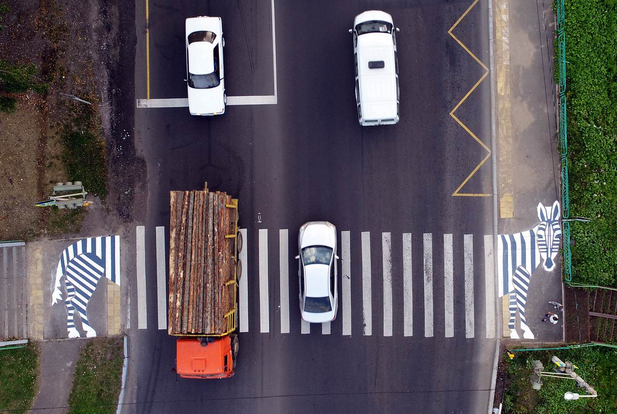 Растянулась через всю дорогу: Зебра по-красноярски