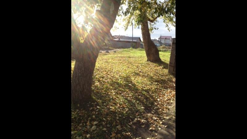 Настя Иванова — Live