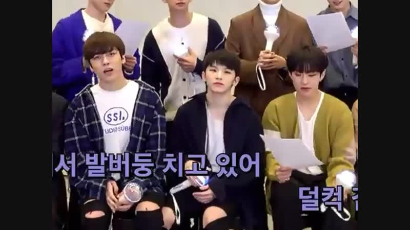 Woozis high notes