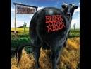 Blink-182 - Degenerate