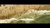 Quantic - Mishaps Happening (Prins Thomas edit) HD
