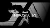 LAAKE, Introspective