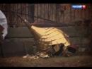 НОВЫЙ ФИЛЬМ АРКАДИЯ МАМОНТОВА о гонениях против Церкви на Украине
