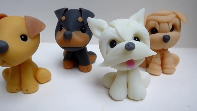 Rottweiler ° West Terrier ° Shar pei ° Labrador - Perros   Tutorial Fácil