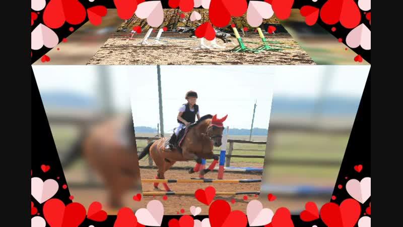 наши самые любимые лошадки и наша весёлая компания