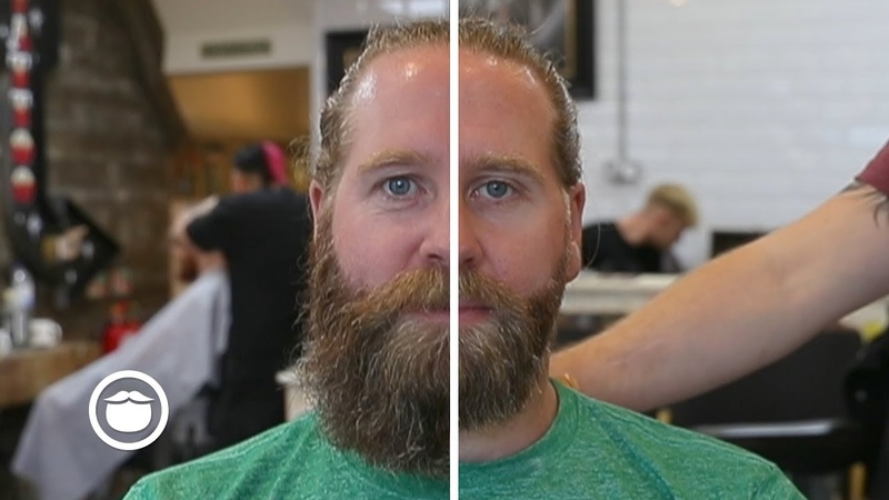Wild to Well-Groomed: Trimming a Giant Beard