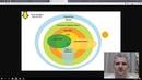Грамотное мышление 3 3 Систематизация информации Примеры для тренировки