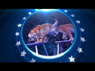 Цирк Никулина до 14 октября в Магнитогорске