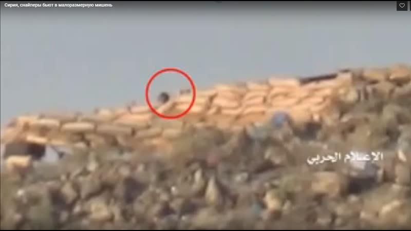 Сирия снайперы бьют в малоразмерную мишень