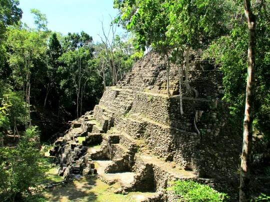 Эль-Мирадор — затерянный в джунглях древний город майя Заросший джунглями Эль-Мирадор — это крупное доколумбовое поселение майя, расположенное на севере современного департамента Эль-Петен,