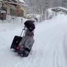 """Анастасия Макеева on Instagram: """"😂😂😂😂Ну вот я и на отдыхе 😂😂😂😂😂🎄Как-то так 🤪🙃Снега тут море ❄️☃️ отдых сказка снег горы альпы"""""""