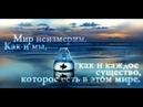 Дмитрий Василевский Старик