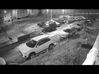 Воронеж. Во дворе собаки поцарапали всю машину.