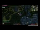 Стрим по игре Riders of Icarus 2