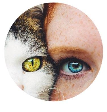 Мы думаем, что видим мир четко и в реальном времени, но зрение устроено иначе.