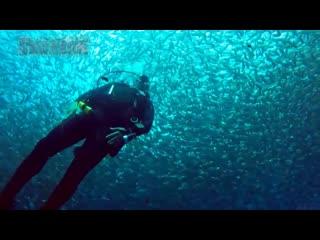 Интересное видео №51 - 5 мистических явлений в океане, снятых на камеру