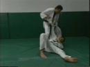 Jiu-jitsu Basics Vol.4