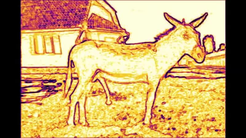 Giant Donkey Penis Hypnosis ~ Long Lasting Erections