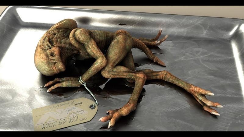 ЭТА находка ввела в ступор ВСЕХ! Останки неизвестного существа ИЛИ следы древних пришельцев!