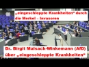 Dr Birgit Malsack Winkemann AfD über eingeschleppte Krankheiten ► Rede im Bundestag