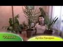 Финик выращивание финиковой пальмы Артём Панарин