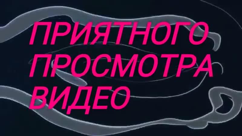 7 прикольных видео по теме АНДЕРТЕЙЛ 😎