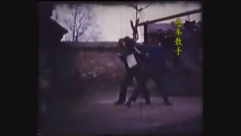 Yiquan (意拳) - Yao Chengguang (姚承光) Yao Chengrong (姚承荣)