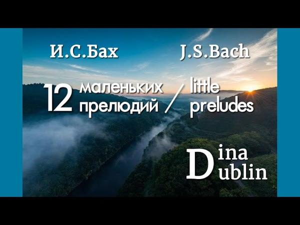 И.С. Бах - 12 маленьких прелюдий (2,1,3) | Dina Dublin
