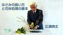 鋏の扱いと花材処理の基本-生け花(華道)広瀬典丈