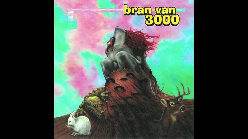 Bran Van 3000 Problems