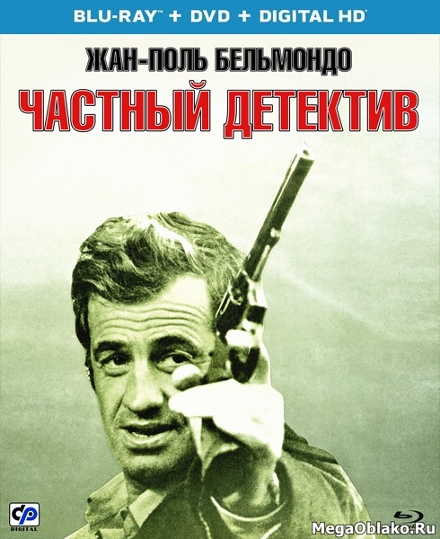 Частный детектив / Hunter Will Get You / L'alpagueur (1976/BDRip/HDRip)