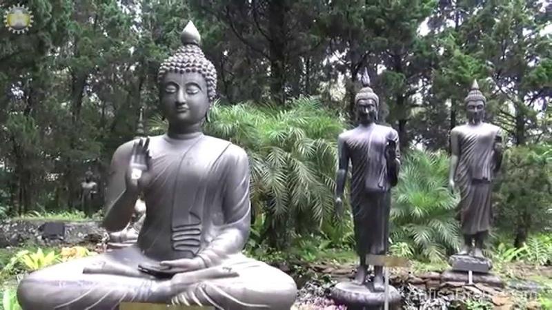 Статуи Будды в лесу мистически завораживают.Doi Chaang. Таиланд.
