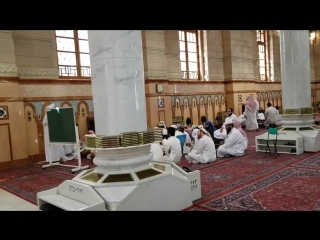 جولة في ربوع مسجد الحبيب المصطفى صلى الله عليه وسلم ضحوة