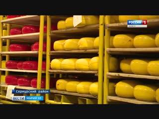 Продукцию «Сернурского сырзавода» Республики Марий Эл представят в Совете Федера (1)