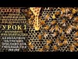 МОСКВА ГЕРМАН СТЕРЛИГОВ МЕД - БЕЗПЛАТНОЕ ОБУЧЕНИЕ ПЧЕЛОВОДСТВУ - УРОК 3 КОЛОДНОЕ ПЧЕЛОВОДСТВО - ЦВНП